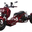 Ice Bear MADDOG 50cc Motor Trike PST50-19N Price 550usd
