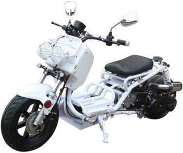 "ICE BEAR ""GEN III MADDOG"" 50cc Scooter (PMZ50-19N) Price 450usd"