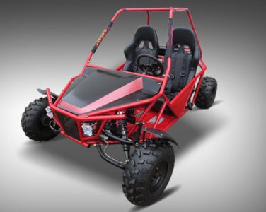 Batman 150cc Go Kart Price 750usd