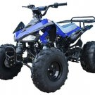 PRO TT Cheetah Kawasaki KFX Clone 110cc ATV  Price 200usd
