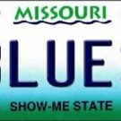 """NHL Blues Vanity License Plate Tag  6""""x 12"""" Metal Auto St Louis Stanley New Cup"""