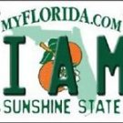 "NCAA Miami Vanity License Plate Tag 6""x 12"" Hurricanes Team FL Metal Auto UM"