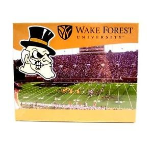 NCAA  Wake Forest Stadium Jigsaw Puzzle - 500 Pcs Piece School Game Deacons