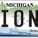 "Nfl Lions Vanity License Plate Tag Detroit  6""x 12""  Metal Auto Sanders Ford New"