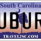 "Auburn Tigers Vanity License Plate Tag 6""x12""  College Metal Auto NCAA Wall SC"