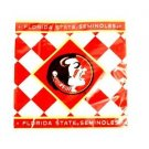 NCAA Florida State Seminoles Napkins 24 Pack Lunch Dinner Party  University Logo