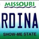"""MLB St Louis Cardinals  Vanity License Plate Tag  6""""x 12""""  Metal Auto State"""