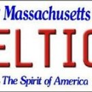"Celtics  Vanity License Plate Tag  6""x 12"" Metal Boston White  Auto Wall Bird"