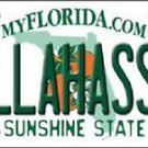 "Ncaa Tallahassee Vanity License Plate Tag 6""x12"" Fsu Noles College Metal Auto"