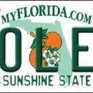 "Ncaa Florida State Vanity License Plate Tag 6""x12"" Fsu Noles College Metal Auto"