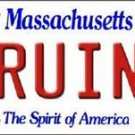 "NHL Bruins  Vanity License Plate Tag  6""x 12"" Metal Boston Auto Stanley Cup New"