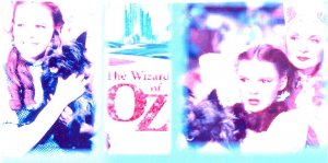 WIZARD OF OZ NEW CHECKBOOK COVER