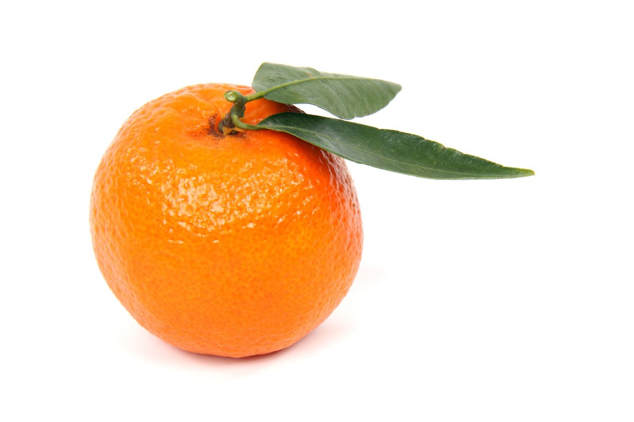 Mandarin Orange Parasoy Clamshell Wax Cubes