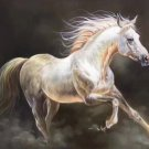 """Simple modern Hand painted oil painting on canvas""""Akhal-teke horses""""60x90CM(23.6""""x35.4"""")Unframed-06"""