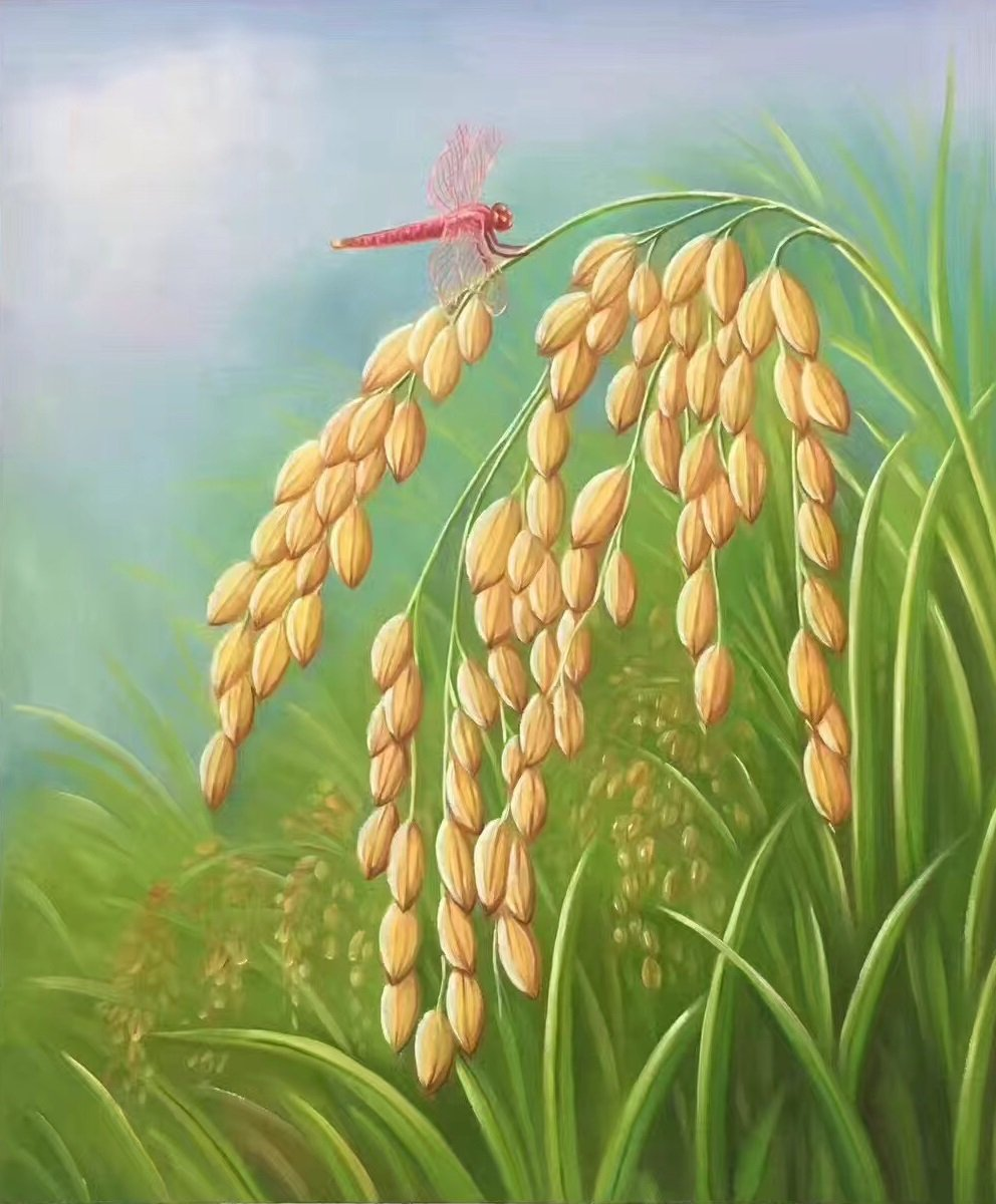 """Simple modern Hand-painted oil painting on canvas""""crop""""50x60CM(19.7""""x23.6"""")Unframed-01"""
