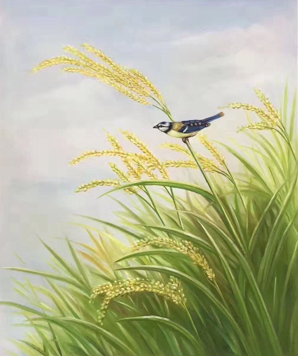 """Simple modern Hand-painted oil painting on canvas""""crop""""50x60CM(19.7""""x23.6"""")Unframed-05"""