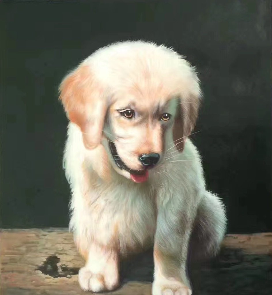 """Simple modern Hand-painted oil painting on canvas""""Cute dog""""50x60CM(19.7""""x23.6"""")Unframe-01"""
