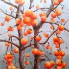 "Hand painted oil painting on canvas""persimmon""60x90CM(23.6""x35.4"")Unframed-05"