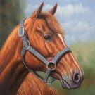 "Hand painted oil painting on canvas""Akhal-teke horses""50x60CM(19.7""x23.6"")Unframed-15"