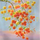 "Hand painted oil painting on canvas""persimmon""60x90CM(23.6""x35.4"")Unframed-19"