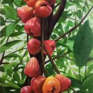 """Hand painted oil painting on canvas""""bumper harvest fruits""""60x90CM(23.6""""x35.4"""")Unframed-56"""
