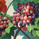 """Hand painted oil painting on canvas""""bumper harvest fruits""""60x90CM(23.6""""x35.4"""")Unframed-57"""
