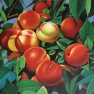 """Hand painted oil painting on canvas""""bumper harvest fruits""""60x90CM(23.6""""x35.4"""")Unframed-61"""