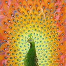 """Simple modern Hand painted oil painting on canvas""""Gorgeous peacock""""60x120CM(23.6""""x47.2"""")Unframed-22"""