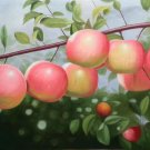 "Hand painted oil painting on canvas""bumper harvest fruits""60x90CM(23.6""x35.4"")Unframed-65"
