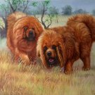 "Simple modern Hand-painted oil painting on canvas""Tibetan mastiff""60x90CM(23.6""x35.4"")Unframe-06"
