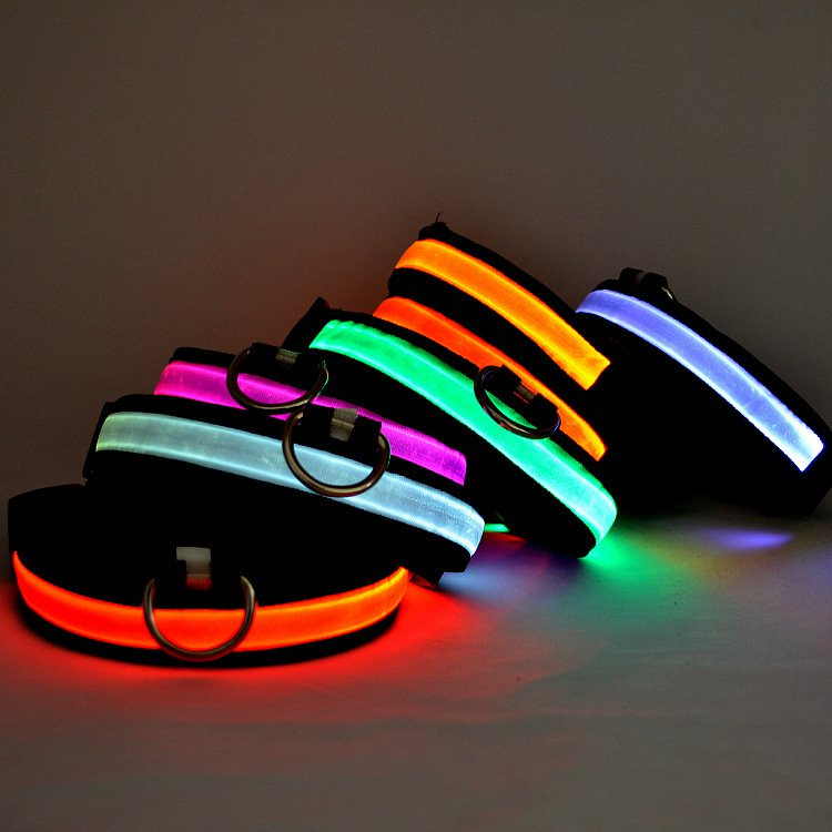 led collar for cat and dog