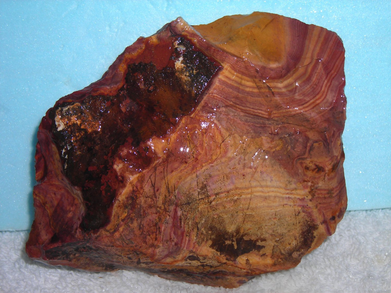 HICKORYTE--BANDED VOLCANIC RHYOLITE--FROM MEXICO