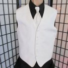 Med Ivory Metallic Fleck Prom Wedding Fullback Tuxedo Vest Solid Windsor Tie