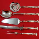 Romance of the Sea Wallace Sterling Silver Thanksgiving Serving Set Custom 5pc