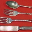 Monticello by Lunt Sterling Silver Regular Size Place Setting(s) 4pc