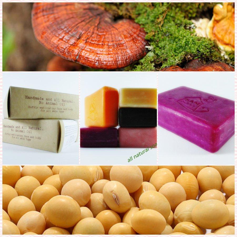 DIY | 5 Favor Natural Herbal Handmade Soaps as you like