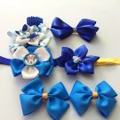 6pcs Blue Accessories