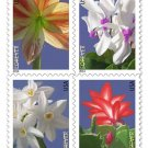 USPS SHEET of 20 Winter Flowers Floral Christmas Cactus First Class Postage Forever Stamps Booklet