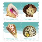 USPS SHEET of USPS New Seashells Pane of 20 First Class Postage Forever Stamps Booklet