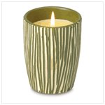 NEW! Jungle Stripe Scented Candle