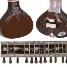 DARK ROSEWOOD STUNNING INDIAN SEMI-ACOUSTIC FUSION SITAR w EXTENSIVE CARVING