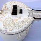 SITAR GOLDEN LEAF WITH FIBERGLASS CASE GSM063 CA