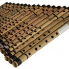 18 BANSURI MAHARAJA™/INDIAN BAMBOO FLUTE/FF to A#/BANSARI/FLUTES FOR SALE/ABE-2