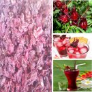 Thai Herb Dried Flower Roselle Hibiscus Sabdariffa Tea Drink Natural Health