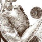 Lifting - Original Drawing - Mark Knot