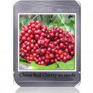 Heirloom Chinese Red Sweet Cherry Fruit Seeds, 20 Seeds, tasty juicy cherry tree