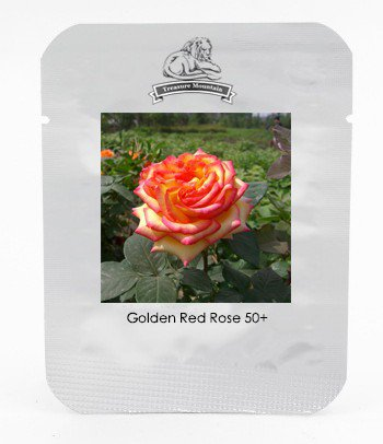Heirloom 'Mu Na' Golden Red Rose Shrub Flower Seeds, Professional Pack, 50 Seeds