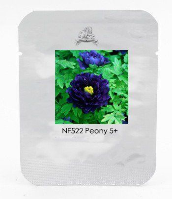 1 Professional Pack, 5 Seeds / Pack, Dark Blue Tree Peony Flower Seeds