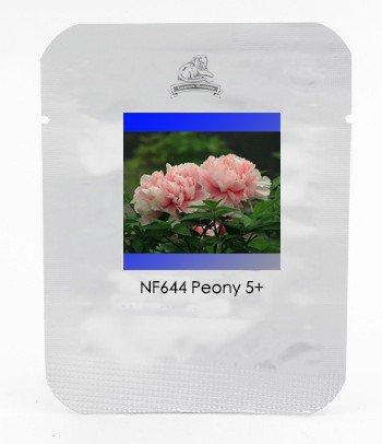 Rare Heirloom Pink Peony 'Gu Luo Kui' Garden Plant Seeds, 5 Seeds / Pack