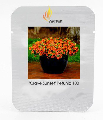 Calibrachoa 'Kabloom Crave Sunset' Vigorous Free-flowering Annual Petunia Seeds